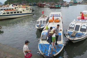 Những phương tiện nào được vận tải từ bờ ra đảo?