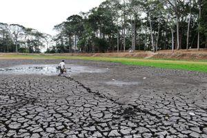 ĐBSCL: Mặn mùa khô khả năng xuất hiện sớm từ 10 đến 30 ngày