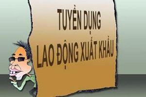 Tìm bị hại của giám đốc lừa đảo xuất khẩu lao động