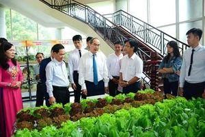 TP Hồ Chí Minh tiếp tục đổi mới, phát triển và nâng cao hiệu quả kinh tế tập thể