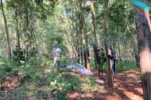 Bắt nghi phạm sát hại thiếu nữ trong rừng cao su