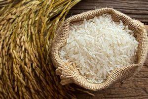 Người bán gạo không bao giờ tiết lộ cho bạn điều này: Cách chọn gạo ngon, hàng chuẩn không bị tẩm nhuộm