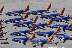 Mỹ: FAA thông tin sai về trình độ của các thanh tra hàng không