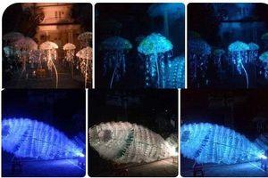 Đà Nẵng: Độc đáo nghệ thuật sắp đặt sinh vật biển từ rác thải nhựa