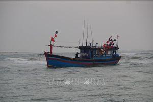 Cứu 7 ngư dân cùng tàu cá bị nạn trên biển
