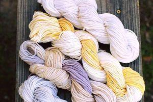 Sợi lông cừu Đà Lạt xuất lô hàng đầu tiên sang Nhật