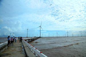 'Cánh đồng điện gió' trở thành điểm check in hot nhất Bạc Liêu