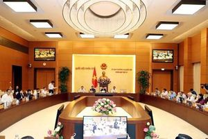 Nghị quyết về việc thành lập thị xã, các phường, xã thuộc một số tỉnh