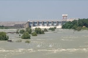 Triều cường sông Đồng Nai lên trên mức báo động 2, Thủy điện Trị An giảm xả lũ