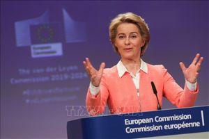 Ủy ban tư pháp của EP bác bỏ các nhân vật đề cử của Hungary và Romania vào EC