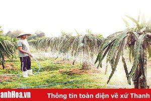 Huyện Thiệu Hóa quan tâm thực hiện Chương trình mỗi xã một sản phẩm