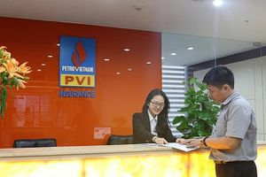 Bảo hiểm PVI chi hầu bao hàng trăm tỷ đồng bồi thường vụ cháy Rạng Đông?