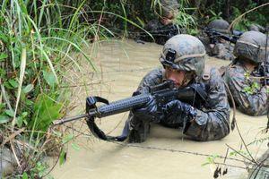Từ bài học chiến tranh Việt Nam, Mỹ huấn luyện lính trong rừng