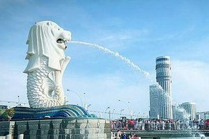 Bí mật đằng sau tượng sư tử biển nổi tiếng Singapore