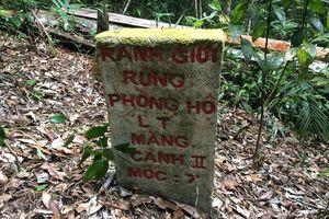 Choáng váng, lâm tặc băm nát rừng Kon Plong: Chốt bảo vệ có cũng như không