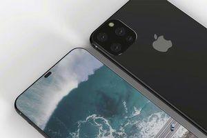 iPhone 11 có khả năng nhận biết và cảnh báo người dùng khi thay màn hình 'rởm'