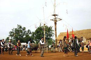 Những nghệ sĩ của buôn làng