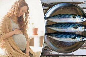5 loại cá thèm mấy mẹ bầu cũng không được đụng đũa tránh gây hại cho thai nhi