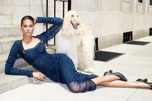 'Chân dài' người Pháp cao 1m80 Cindy Bruna quyến rũ hút hồn