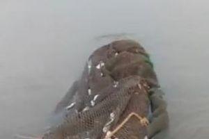 Vớt được lưới của tàu dã cào rách toác tại khu vực cá chết ở Hà Tĩnh