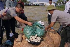 Tiêu hủy 82kg sản phẩm từ ngà voi tang vật