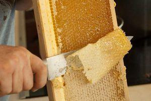Quy trình chiết xuất mật ong nguyên chất