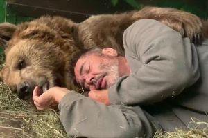 Gấu mồ côi ôm người chăm sóc vào lòng rồi âu yếm trước khi chìm vào giấc ngủ