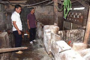 Một xã ở Nghệ An có nguy cơ xóa sổ đàn lợn vì dịch tả châu Phi