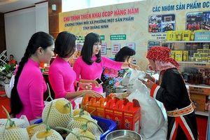 Xây dựng nông thôn mới ở Quảng Ninh: Nhiều chỉ tiêu vượt trội hơn so với cả nước