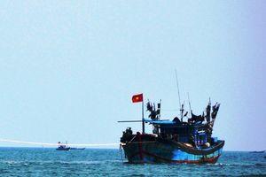 Quảng Nam: Lai dắt tàu cá bị nạn cùng 12 ngư dân vào bờ