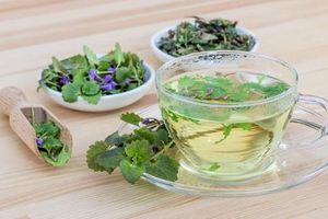 8 loại trà thảo mộc giúp kiểm soát bệnh tiểu đường