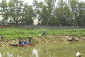 Quảng Nam: Nhà máy cồn gây ô nhiễm cam kết giải phóng hàng tồn kho trong vòng 15 ngày