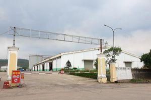 Nhà máy cồn bốc mùi thối ở Quảng Nam cam kết dừng sản xuất trong 15 ngày