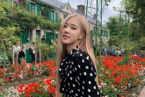 Rosé (BLACKPINK) đăng tải hình chụp đẹp như hoa trên Instagram