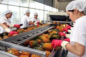 Nhập khẩu tăng, xuất khẩu rau quả sụt giảm 5 tháng liên tiếp