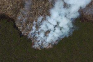Indonesia tự chế mưa dập lửa cháy rừng