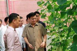 Thủ tướng Lào Thongloun Sisoulith thăm Khu công nghệ cao Đà Nẵng