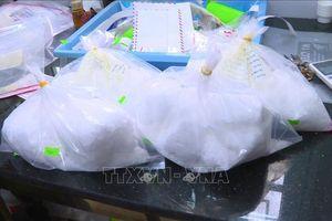 Được trả công 1.000 USD để vận chuyển 4 kg ma túy đá qua cửa khẩu Nậm Cắn