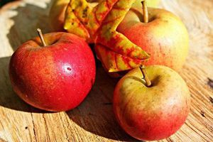 6 loại quả mát gan, lọc sạch độc tố cơ thể, nên ăn mỗi ngày