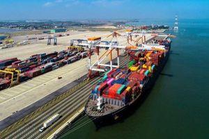 Thủ tướng phê duyệt chủ trương đầu tư hai bến cảng tại Hải Phòng, tổng mức đầu tư gần 7.000 tỷ
