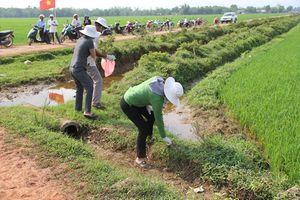 Quảng Trị: Lên phương án xử lý gói thuốc bảo vệ thực vật sau sử dụng