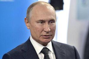 Điện Kremlin tiết lộ kế hoạch tổ chức sinh nhật sắp tới của TT Putin
