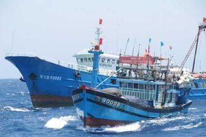 Một tàu cá Việt Nam bị 3 tàu Trung Quốc truy đuổi trên biển Đông