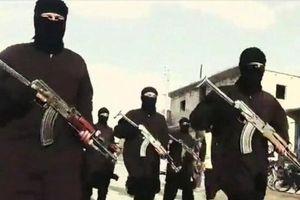 IS tổn thất nặng khi tập kích vào tuyến phòng thủ của quân đội Syria