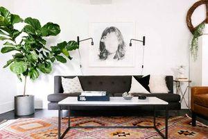 12 ý tưởng trang trí phòng khách nhỏ tín đồ yêu thích phong cách tối giản cần phải biết