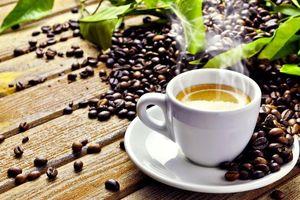 Giá cà phê tuần qua (30/9 - 5/10): Thị trường lao dốc, chạm đáy 32.300 đồng/kg