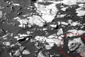 Bằng chứng giật mình về loài khủng long bạo chúa trên sao Hỏa