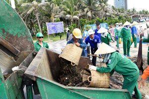 Vũng Tàu: Hàng trăm tấn rác thải bủa vây bãi biển