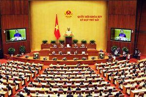 Cho ý kiến về báo cáo tổng hợp ý kiến, kiến nghị của cử tri và nhân dân gửi đến kỳ họp thứ 8, Quốc hội khóa XIV