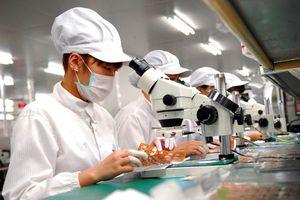 Kinh tế Hà Nội tăng trưởng mạnh mẽ
